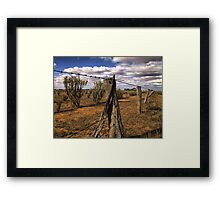 Saltbush Country Framed Print