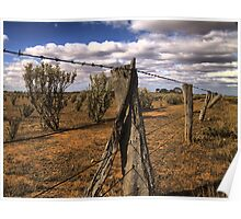 Saltbush Country Poster