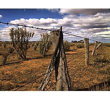 Saltbush Country Photographic Print