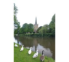 Geese Looking at Holy Trinity Church, Stratford on Avon Photographic Print