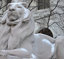 Library Lion by EricFalk