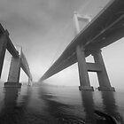 Tamar bridges black and white study by graham1