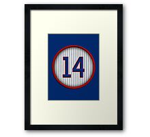 14 - Mr. Cub Framed Print