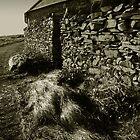 Kearney Village Cottage by ragman