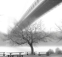 GW Bridge 2663 by Zohar Lindenbaum