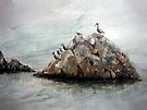 Resting Place - Corona Del Mar CA by arline wagner