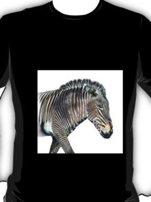 Zephyrus Zebra III T-Shirt