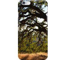 Oak in the Summer iPhone Case/Skin