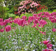 Field of Flowers by sugar31107