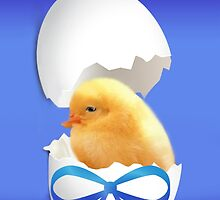 ❤‿❤ I'M OUT OF MY SHELL EASTER IS HERE ❤‿❤ by ✿✿ Bonita ✿✿ ђєℓℓσ