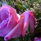 Pink Rose Bud by cetstreasures