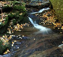 Fall Waters by Forrest Tainio