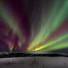 Aurora Borealis, Alaska by Dean Bailey