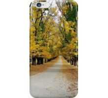 Autumn at the winery iPhone Case/Skin