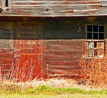 The Big Barn 2 by ej29