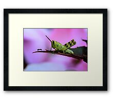 """""""Who Goes There"""" Framed Print"""