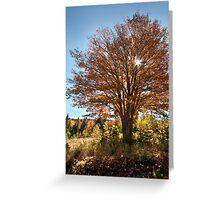 Cape Breton Autumn Greeting Card