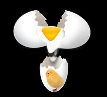 GIVE A CHICK A BREAK..EGG PILLOW AND OR TOTE BAG by ✿✿ Bonita ✿✿ ђєℓℓσ