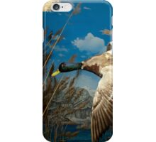 Natural environment diorama - a mallard  flying in the sky iPhone Case/Skin