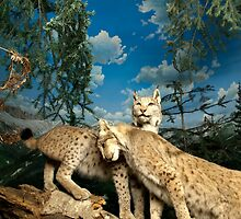 Natural environment diorama - two leopards  by Reinvention
