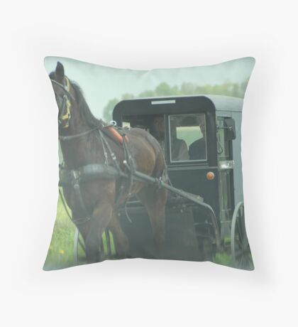 Lancaster County Throw Pillow