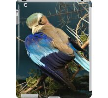 Natural environment diorama - bird with blue wings  iPad Case/Skin