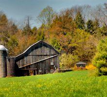 Western Pennsylvania Barn by Dyle Warren
