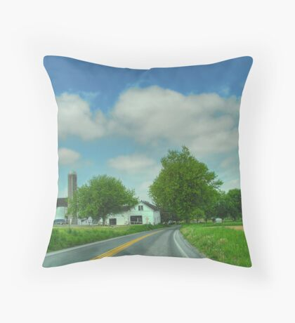 Pennsylvania Amish Farm Throw Pillow
