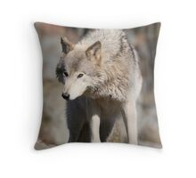 Timber Wolf Throw Pillow