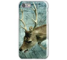 Natural environment diorama -  A deer escaping a tiger attack  iPhone Case/Skin