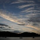 Dusk at Pretty Beach, NSW, Australia by ivanwillsau