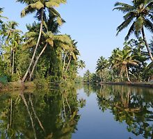 Backwaters Kerala by Sylvie Lebchek