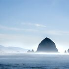 Cannon Beach by DragonflyPrints