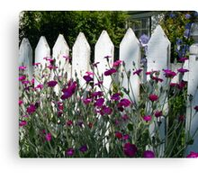 Old Fashioned Picket Fence Canvas Print