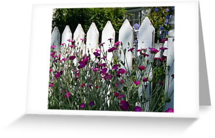 Old Fashioned Picket Fence by Marjorie Wallace
