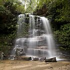 Waterfall, Blue Mountains national Park, NSW Australia by David Mapletoft