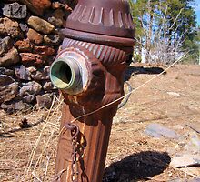 """Old Fire Hydrant"" by Bindee"