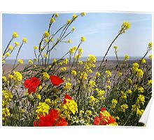 flowers at the beach Poster