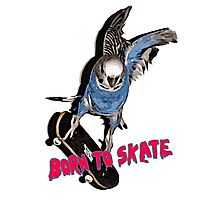 Born to skate Photographic Print