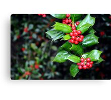 Holly Leaf and Berries Canvas Print