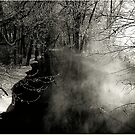 In the misty morning, on the edge of time by jammingene