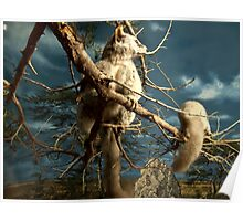 Natural environment diorama - Fox squirrel resting on a branch  Poster
