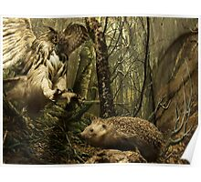 Natural environment diorama - A owl attacking a hedgehog Poster