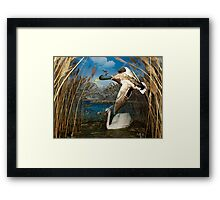 Natural environment diorama - a mallard and a swan in a pond  Framed Print