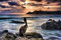 Sunset in Puerto Escondido by Barbara  Brown