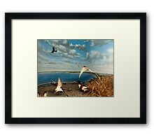 Natural environment diorama - birds flying on the shore of a pond  Framed Print