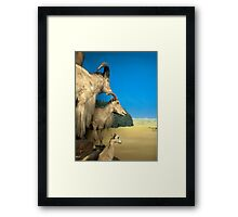 Natural environment diorama - Steinbocks in the desert  Framed Print