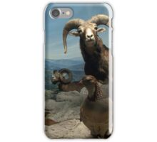 Natural environment diorama - steinbocks iPhone Case/Skin
