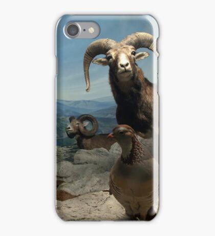 Natural environment diorama - steinbocks iPhone Case/Skin
