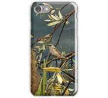 Natural environment diorama - A bird resting on a branch iPhone Case/Skin